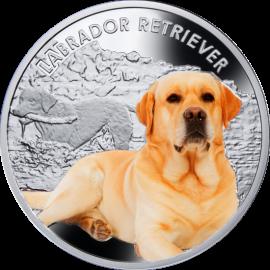 Srebrna Moneta - Labrador,1 dolar, Seria: Przyjaciele Człowieka – Psy