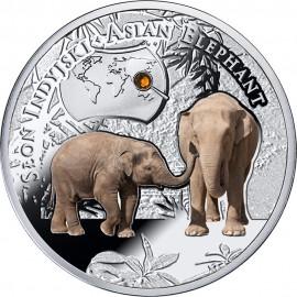Srebrna moneta - Słoń indyjski, Seria SOS dla Świata – Zagrożone Gatunki Zwierząt