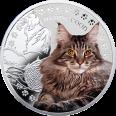 Maine Coon, 1 dolar, Seria: Przyjaciele Człowieka – Koty